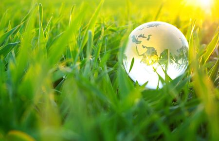 globe in grass Stock Photo - 3846148