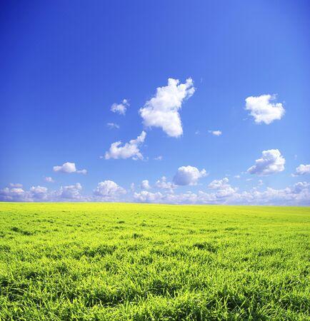 field on sky
