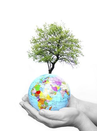 whiteness: Hand holdings a globe on a whiteness Stock Photo