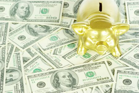 balanced budget: gold piggy bank on a  dollars Stock Photo