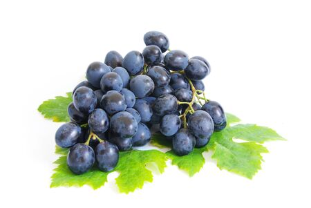 Fresh grapes brunch with green leafs Stock Photo - 7794047