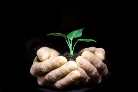 Hands holding sapling in soil on black Stock Photo - 8670407