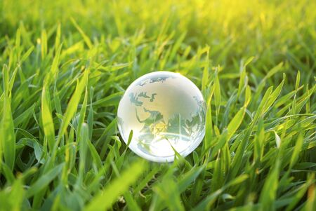 Earth globe in the grass photo