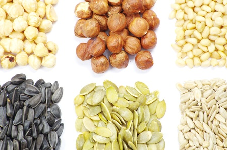 seeds and nuts with collection Stock Photo - 9215604