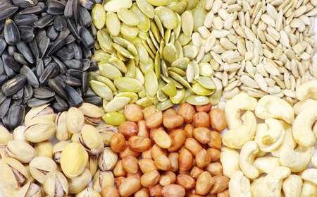 seeds and nuts with collection Stock Photo - 9332083