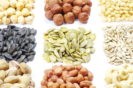 seeds and nuts with collection Stock Photo - 9559016
