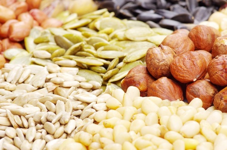 seeds and nuts with collection Stock Photo - 9559012