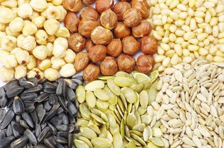 seeds and nuts with collection Stock Photo - 9660681