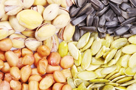 seeds and nuts with collection Stock Photo - 9971465