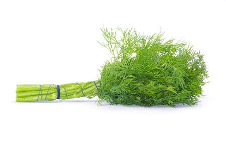 dill on a white background photo