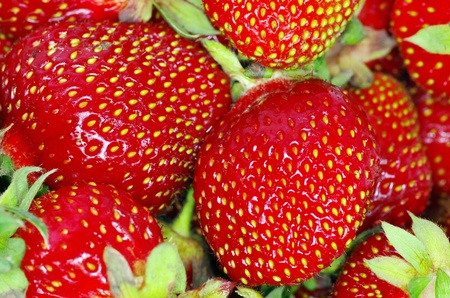 macro of a strawberry texture photo