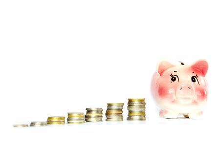 balanced budget:  piggy bank and money isolated on white