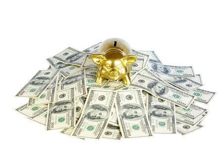 piggy bank on a  dollars photo