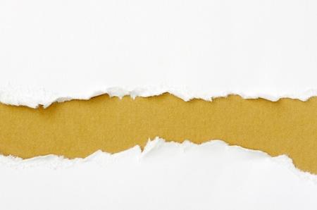 paper curl: papel rasgado con el espacio para su mensaje