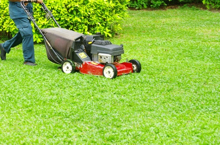 cutters: A man mowing the lawn Stock Photo