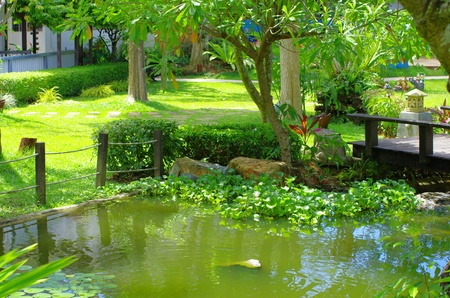 Spring Asian garden with a pond photo