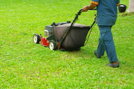 A man mowing the lawn Stock Photo