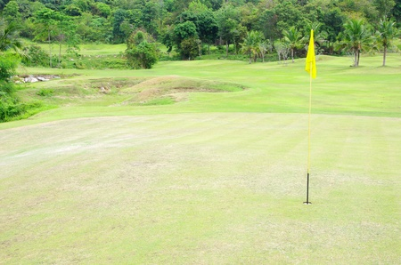 Flag and the golf field