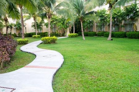 Garden stone path with grass photo