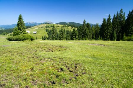 mountain summer landscape with blue sky photo