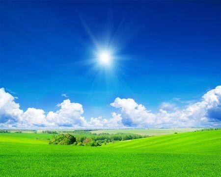 cielo despejado: campo verde y cielo azul
