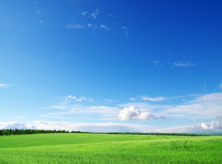 sky and clouds: green field and blue sky