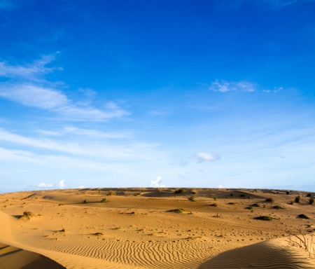 Desert landscape with blue sky Stock Photo - 16604019
