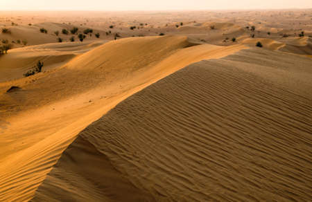 Desert landscape with sanset sky Stock Photo - 16603906