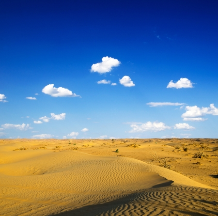 Desert landscape with blue sky photo