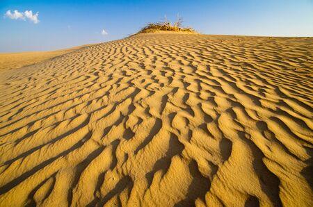Desert landscape with blue sky Stock Photo - 16676361