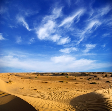desierto: Paisaje del desierto con el cielo azul