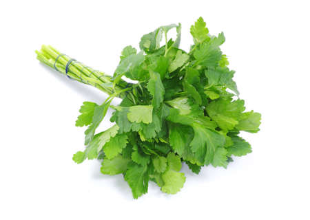 leafy: Bunch of fresh green parsley isolated on white background