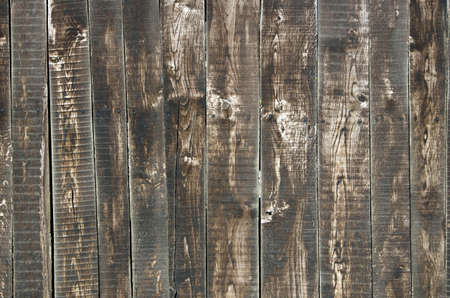 brown wood texture with a natural patterns photo