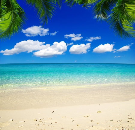 beautiful beach and tropical sea Standard-Bild