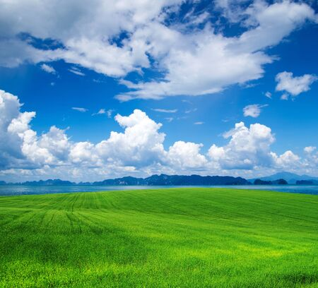 green field and blue sky photo