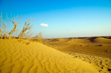 Desert landscape with blue sky Stock Photo - 17330746