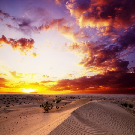 Desert landscape with sanset sky Stock Photo - 17739527