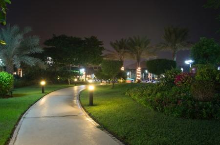 street light: In the garden at night