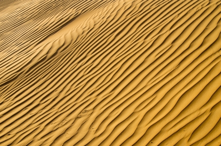 sand texture in Gold desert photo