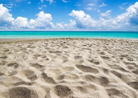beautiful beach and tropical sea Stock Photo - 17781491