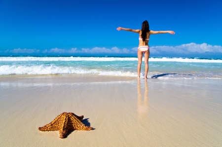 Red starfish on sunny tropical beach photo