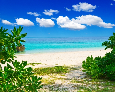 tropical paradise: beautiful beach and tropical sea Stock Photo