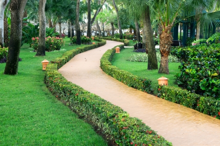 Garden stone path with grass photo