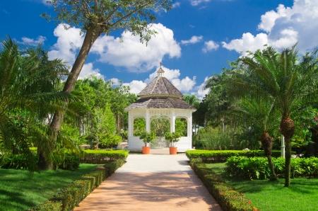 landscaped garden: Garden stone path with grass