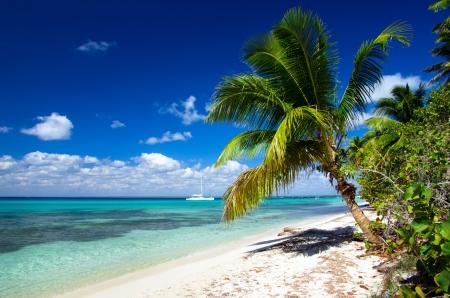 hermosa playa y el mar tropical