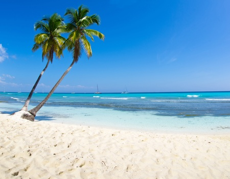 sunny day: beautiful beach and tropical sea Stock Photo