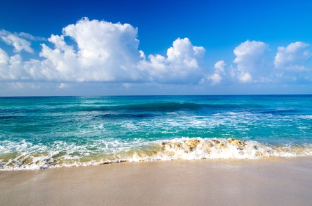 tropical sea under the blue sky photo