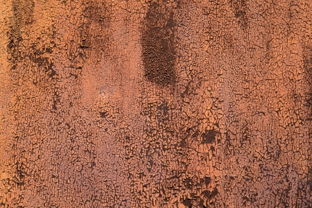 Texture of old grunge rust wall photo