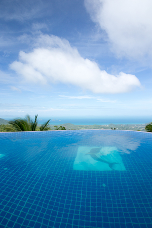tropical swimming pool with coconut tree  photo