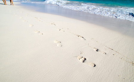 Footprints in wet sand of beach photo